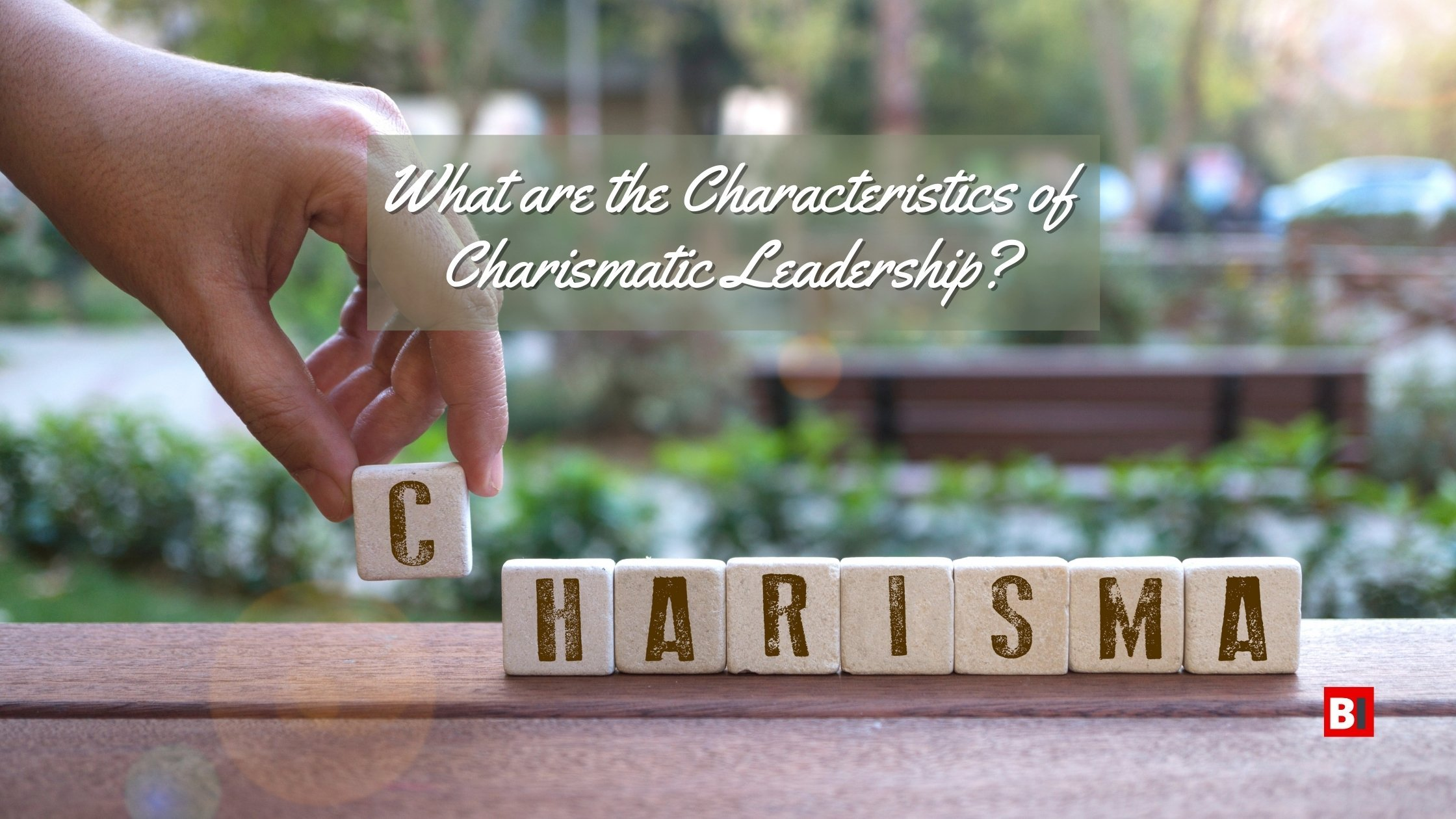 What are the Characteristics of charismatic Leadership_