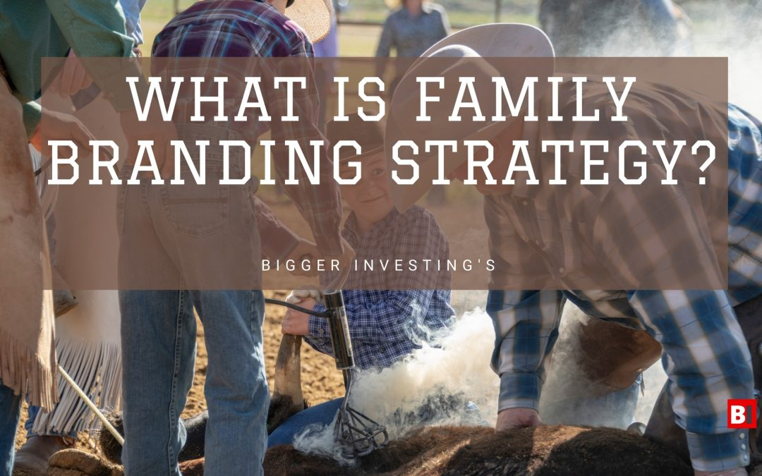 What is Family Branding Strategy?